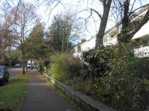 Autumn on the Cator Estate